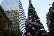 City of Sydney Christmas
